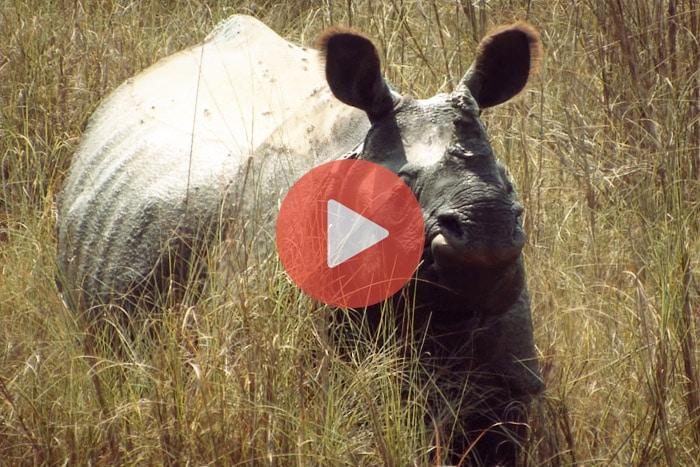 Vídeo 18 Nepal