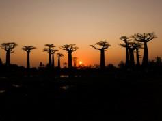 Itinerario de viaje a Madagascar en 18 días de Patri y Diego