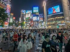 Escapada a Japón de 14 días de Paco y Esther
