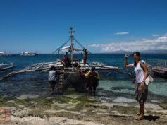 Cómo llegar a Apo island de forma rápida y cómoda