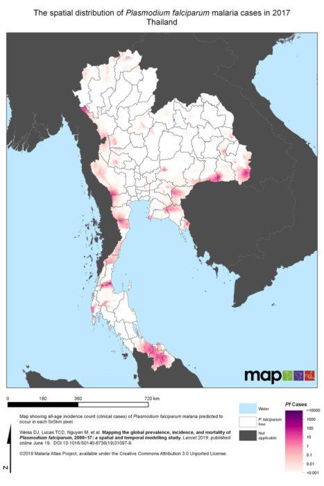 Plasmodium falciparum en Tailandia