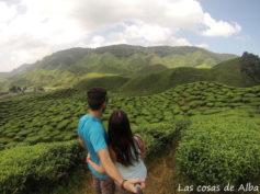 Itinerario de viaje a Malasia en 17 días de Alba y Dani