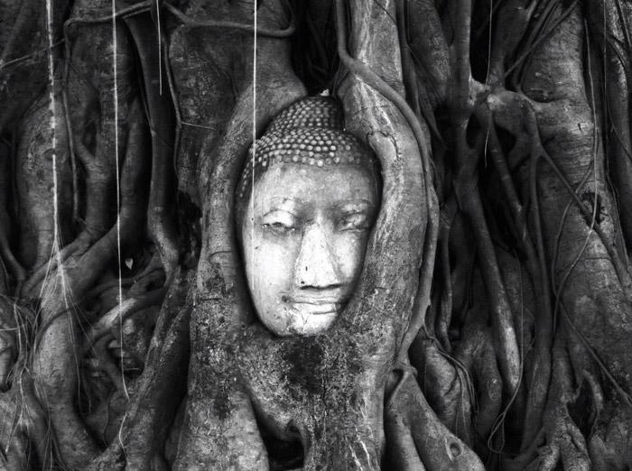 Itinerario de viaje a Tailandia y Camboya: Ayutthaya, Thailand