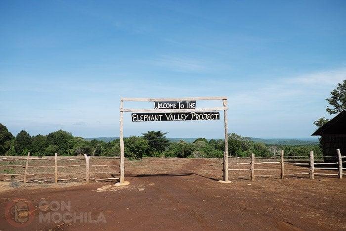 Bienvenidos a Elephant Valley Project