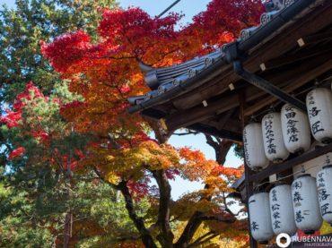 Itinerario de viaje a Japón en 19 días de Patri y Rubén