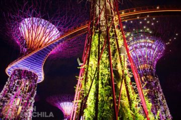 GUIA SINGAPUR GARDENS BY THE BAY