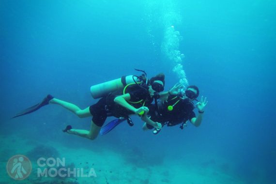 KOH TAO - Buceo