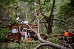GUIA HONG KONG Park 02