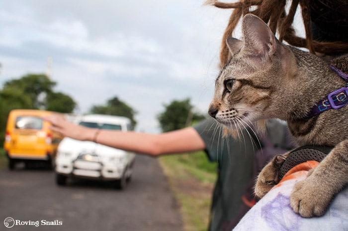 Burma hitchhiking ®rovingsnails.com