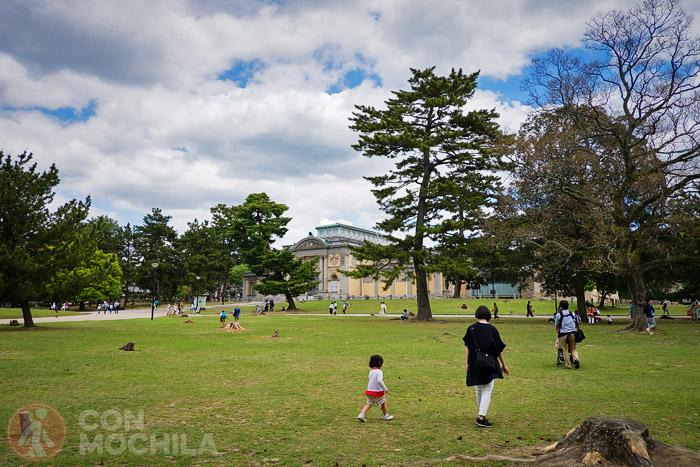 Verde Nara Koen