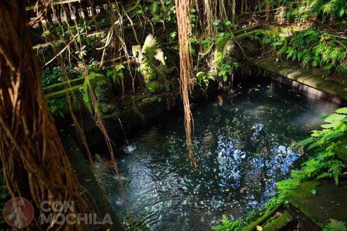 El interior de la fuente