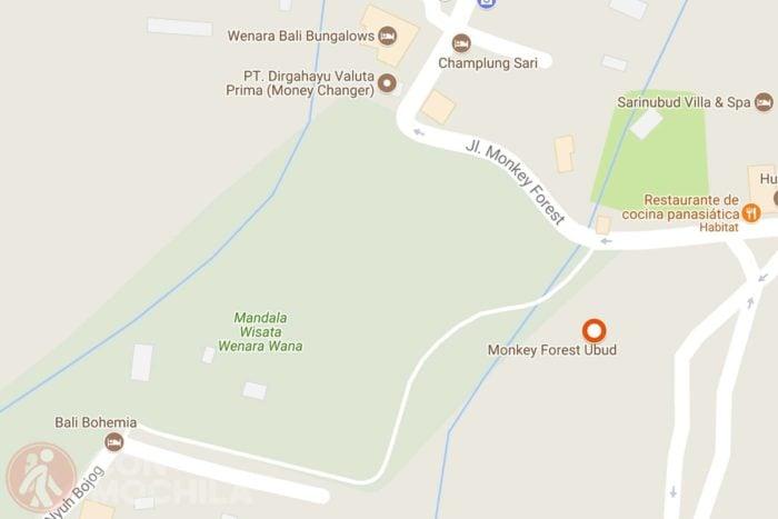 Monkey Forest mapa