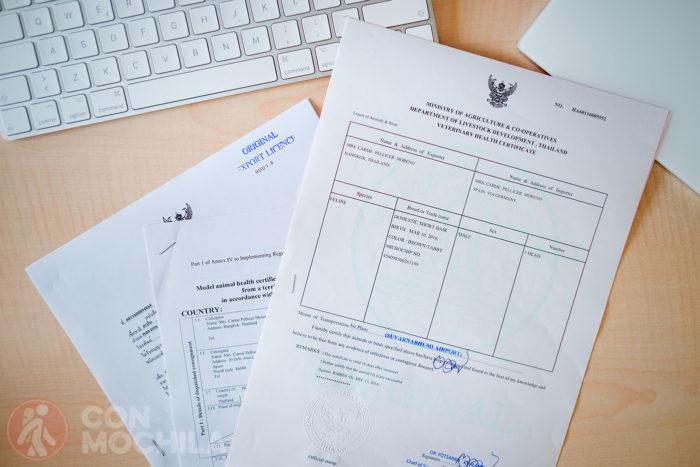 Certificado de salud y permiso de exportación