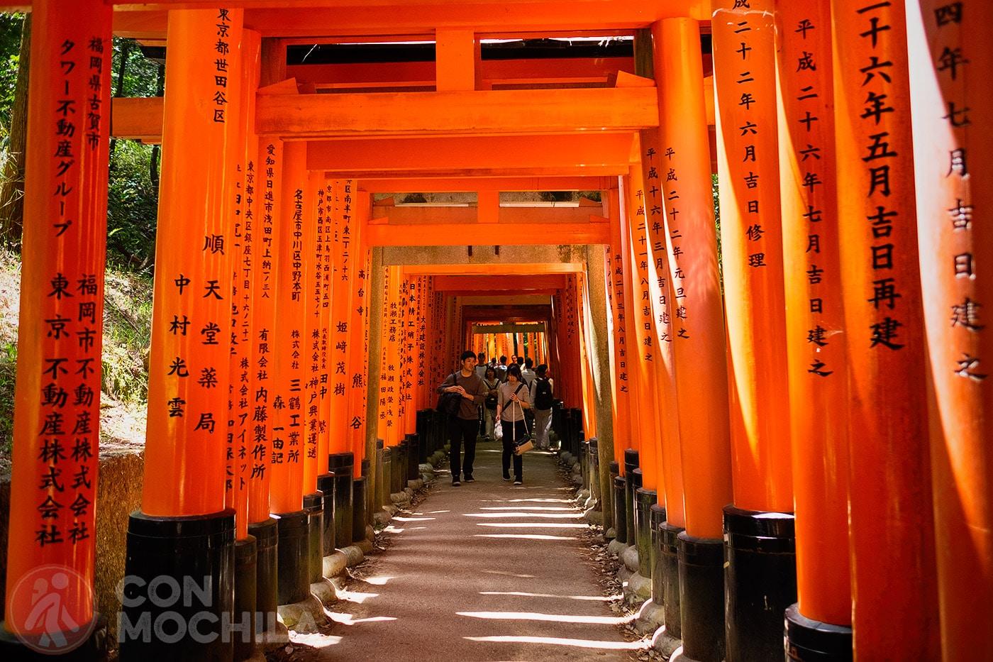 Toriis... uno de los puntos fuertes que ver en Japón