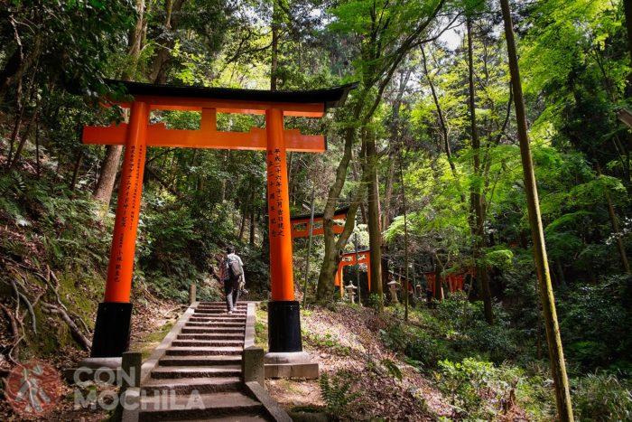 Este arco/puerta es un torii