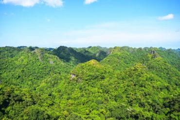 Guía de viaje Bahía de Halong Cat Ba National Park