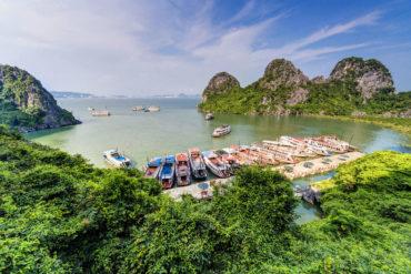 Guía de viaje Bahía de Halong Dau Go Island