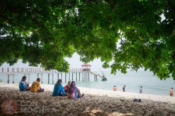 Guia de viaje Georgetown Monkey Beach