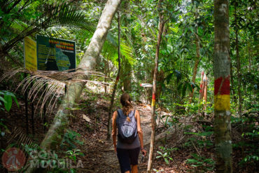Guia de viaje Georgetown Trekking Parque Nacional Penang