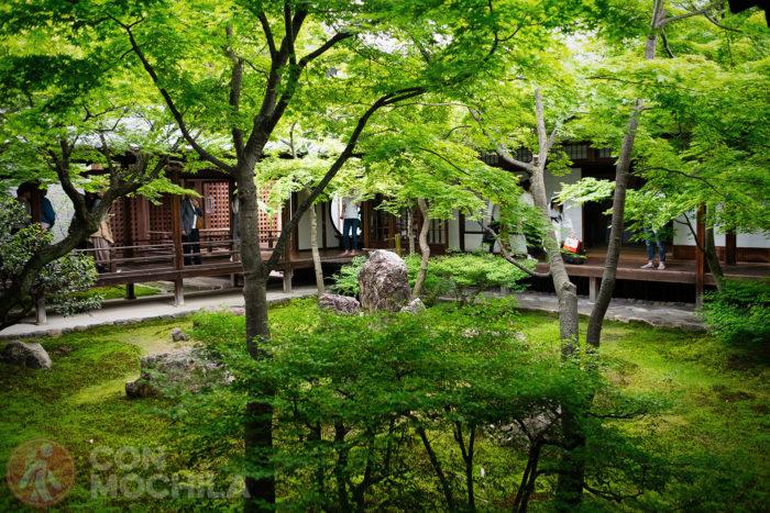 El jardín interior. Verde, verde y más verde