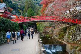 Osaka Guia de viaje Minoh Quasi Parque Nacional Japon