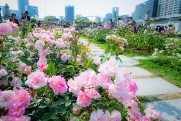Osaka Guia de viaje Parque Nakanoshima Osaka Japon