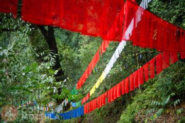 Norbugang Park