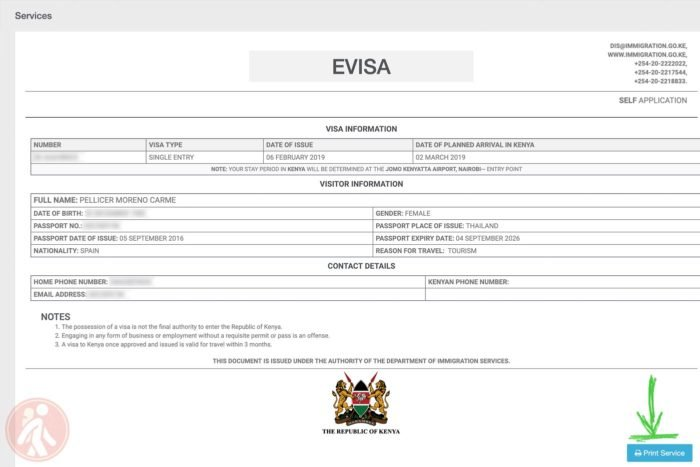 Vista del visado online de Kenia