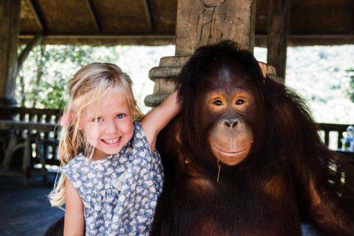 Niña y orangután