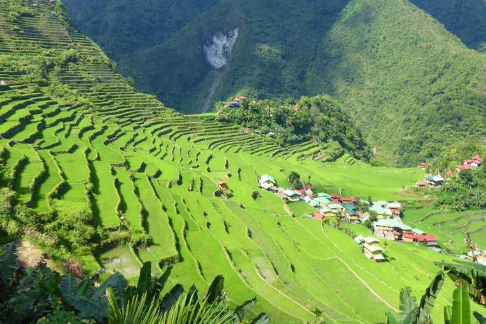 Terrazas de arroz en Batad