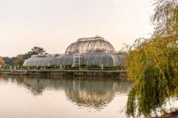 Invernadero de cristal en Kew Gardens