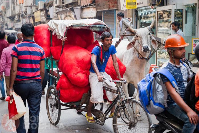 Transporte de todo tipo