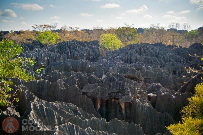 Las formaciones rocosas del Tsingy