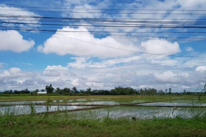 Arrozales norte Tailandia
