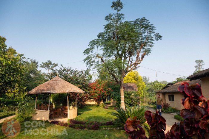 Jardín del alojamiento