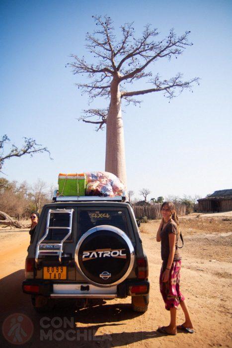 ¿Cómo llegar a la avenida de los baobabs?