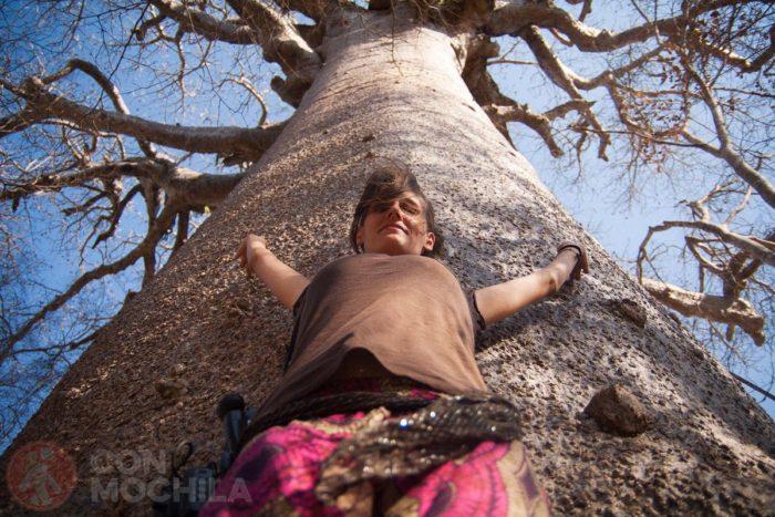 ¡Mirad qué tronco!