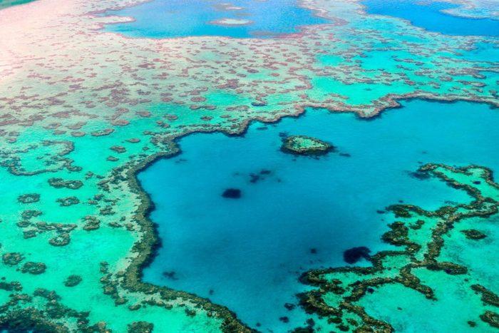 Se dice que la Gran Barrera de Coral, en la costa de Queensland, Australia, se puede ver desde la Luna.
