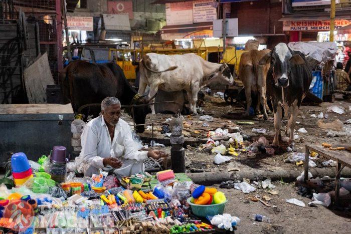 La basura se comerá india un día