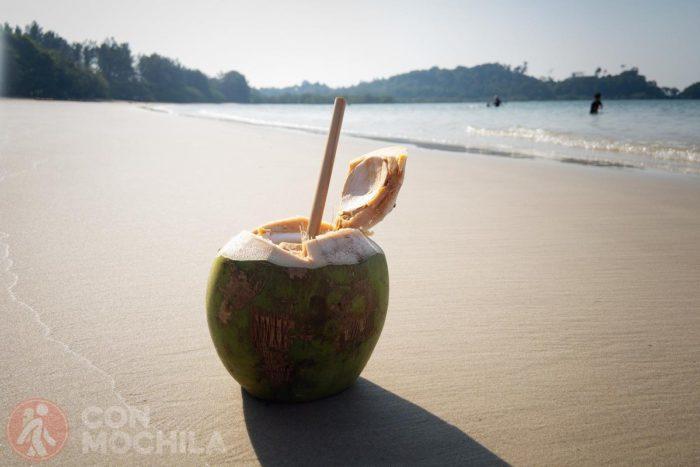 Coco en la playa