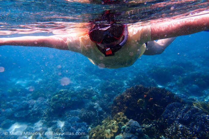 Turista haciendo snorkel cubriendo su cuerpo con algo más que un bikini.