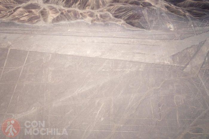 Sobrevolando las líneas de Nazca