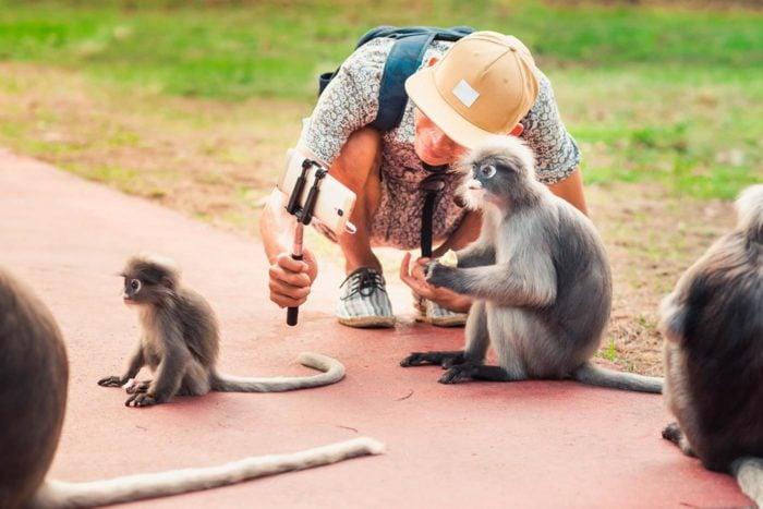 Selfies con animales