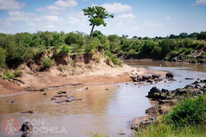 Fiesta en el río
