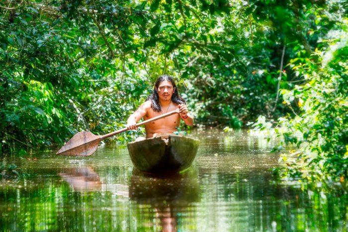 Selva primaria amazónica ecuatoriana